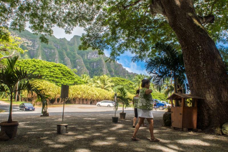 オアフ島のトロピカル・ファーム前の景色